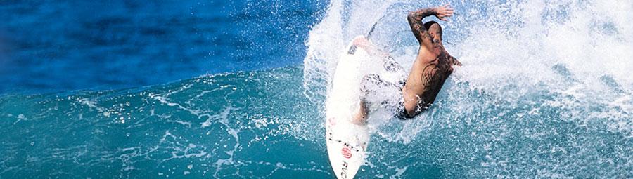 SKELETON FISH   COLE SURFBOARDS